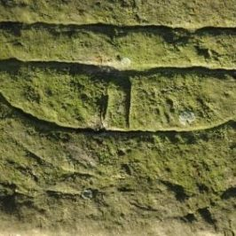 Early Medieval Inscribed Stones