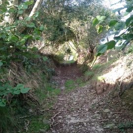 Alternative routes to Penrhys